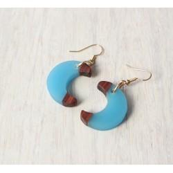 Wooden resin earrings DIPPED